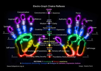 Minor Chakras