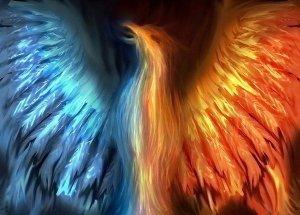 phoenix, a phoenix rising