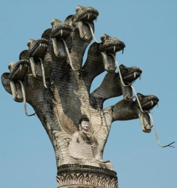 7 headed dragon buddha