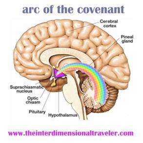 arc of the covenant rainbow light