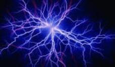 brain synaps