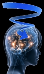 information highway into the brain spiraling down