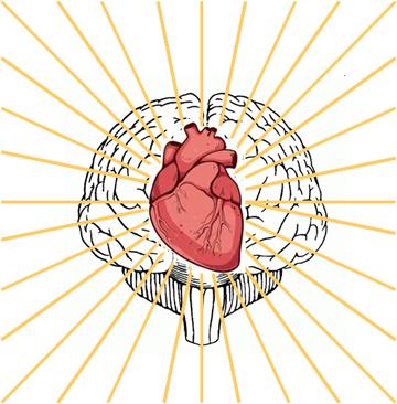 sacred heart brain