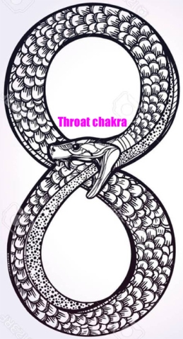 snake infinity symbol