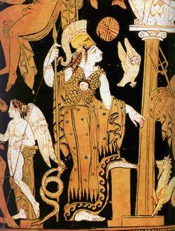 athena and owl 1