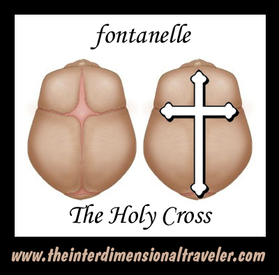 fontanelle-soft-spot-on-top-of-the-head-expanding-spiritually