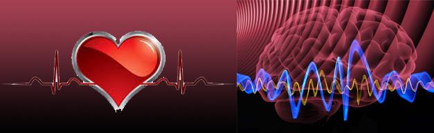 heart head sine wave